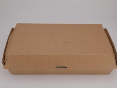 Family box 290X170X85 (003)